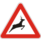 1119-1 Divje živali na cesti