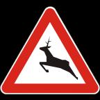 1119 Divje živali na cesti