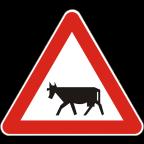 1118 Živali na vozišču